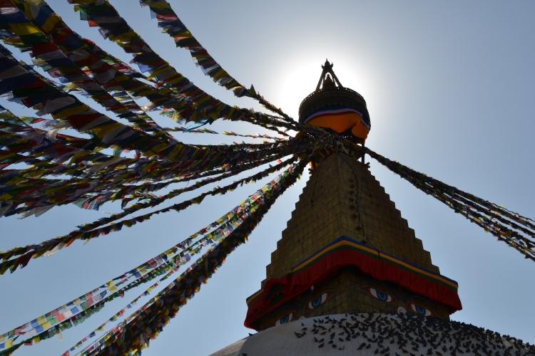 Film Nepal